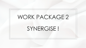 Work Package 2 - Synergise!
