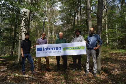 Manfred Grossmann, director of Hainich National Park, together with a Beech Power delegation studying the unfolding beech dieback in Eastern Germany (photo: P. Ibisch)