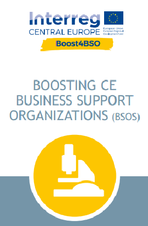 Boosting CE Business Support Organizations